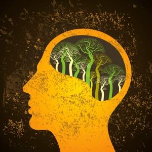 Brain tree illustration, tree of knowledge