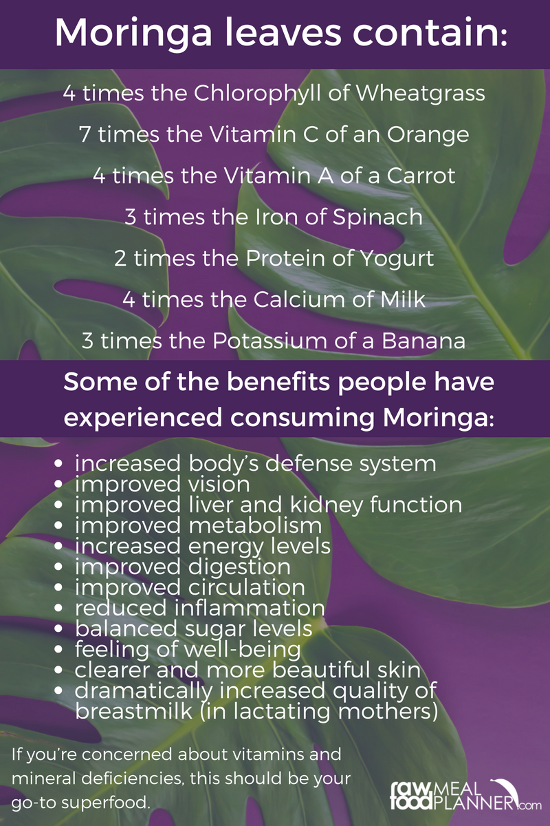 Moringa light